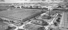 Edénygyártás 50 éve
